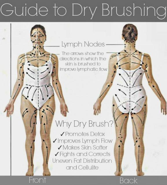DryBrushingGuide