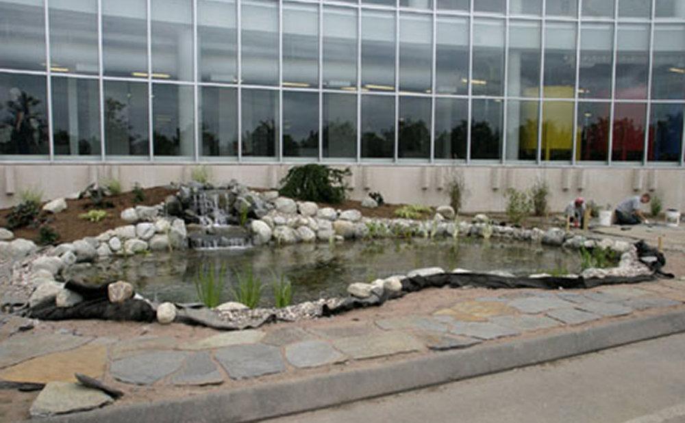 Springfield-pond.jpg