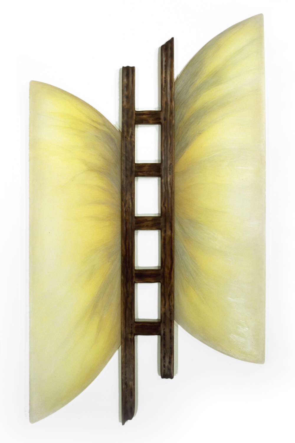 Glass Wings , 1999  Oil paint, acrylic, and prismacolor on plexi, walnut 72 x 41 x 3 inches