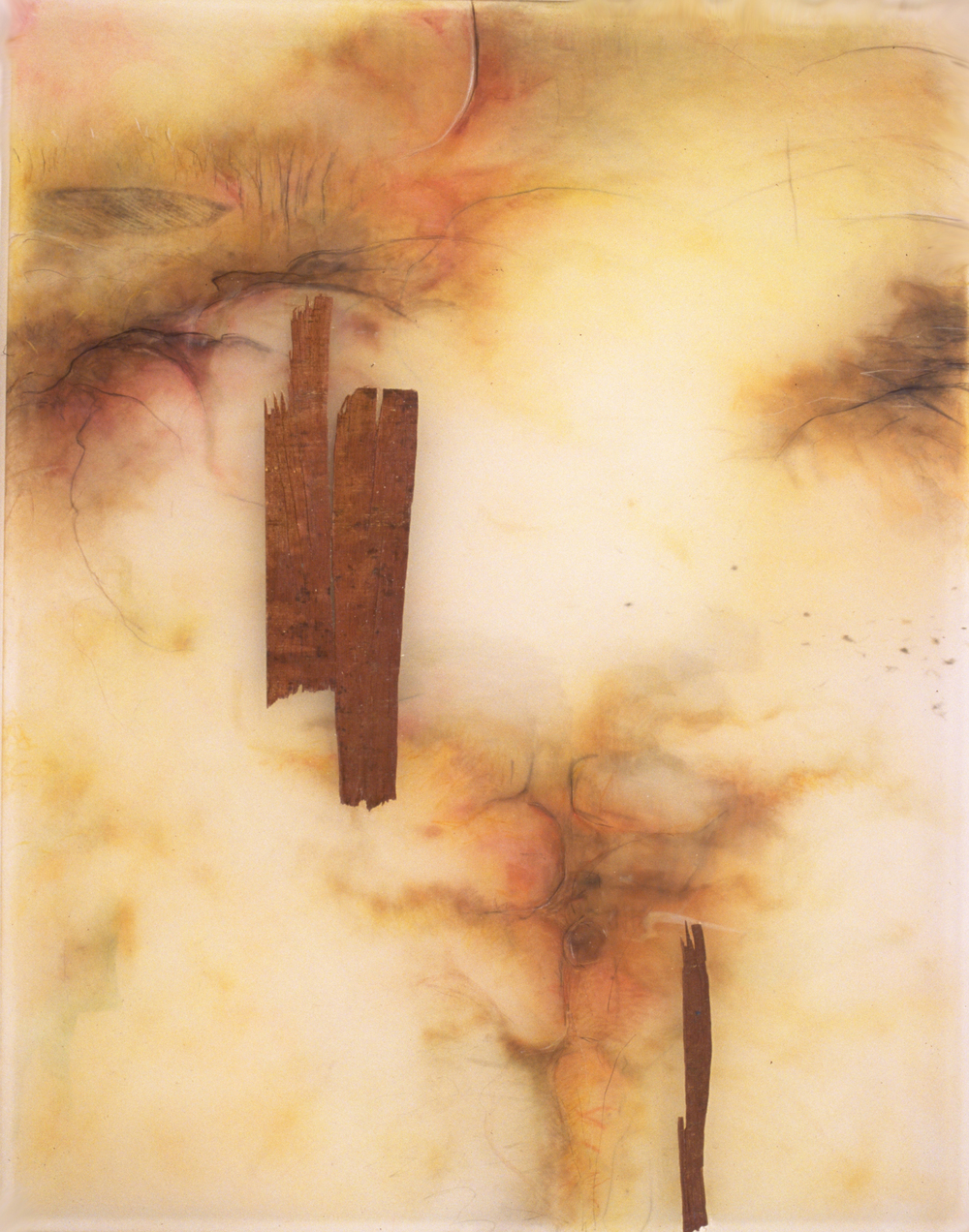 Woods to Mist,  1999  Acrylic and prismacolor on plexi 29 x 25 x 1 inches