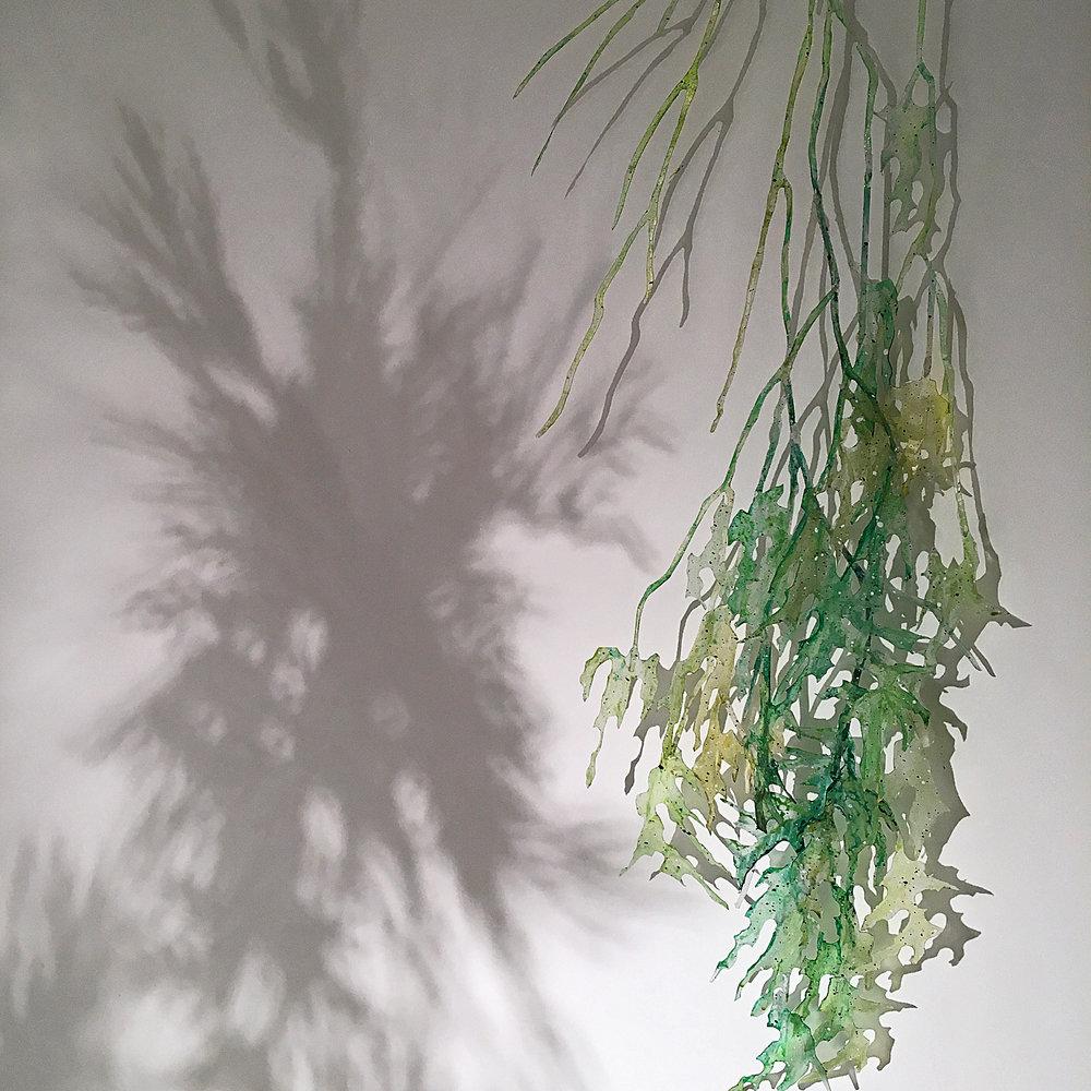 Air_Roots_det_1.jpg