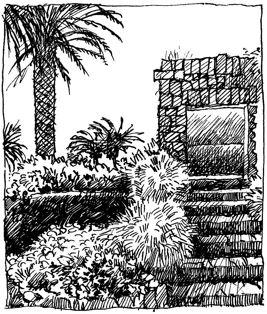 'Tropical Garden'