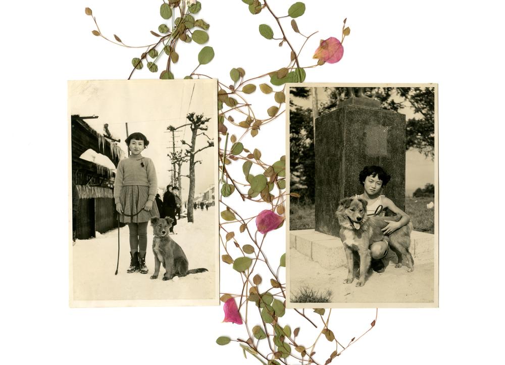 窓-sou- #04