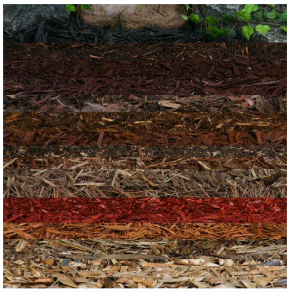 mulch pic.png