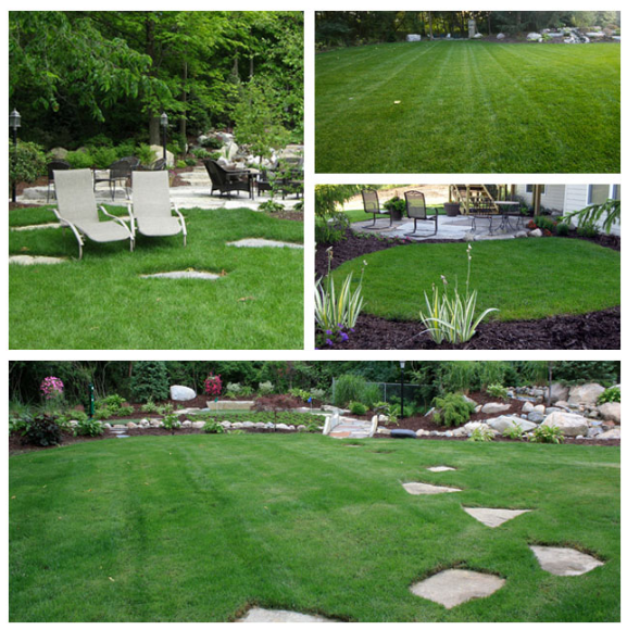 Lawn maint pic.png