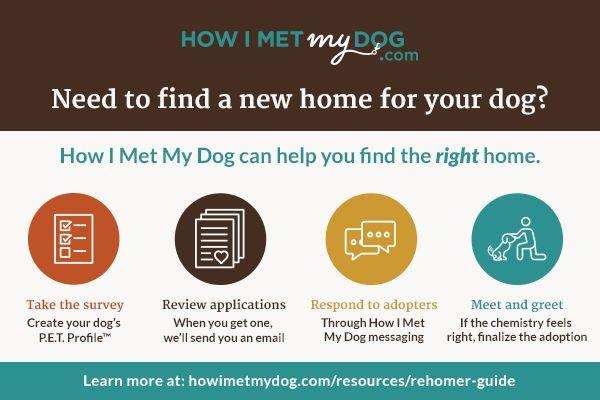 How I Met My Dog Program.jpg