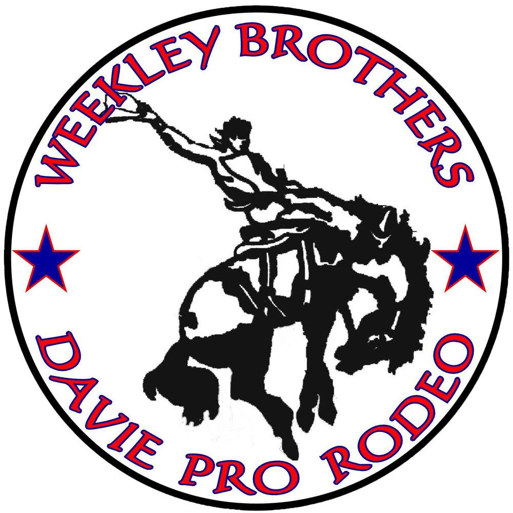 Davie - Star - Horse Logo.jpg