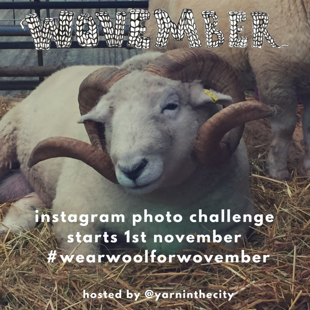 We're hosting a daily Instagram photo challenge for the good folks at Wovember! Follow us on Instagram @yarninthecity to make sure you don't miss any of the photo prompts.