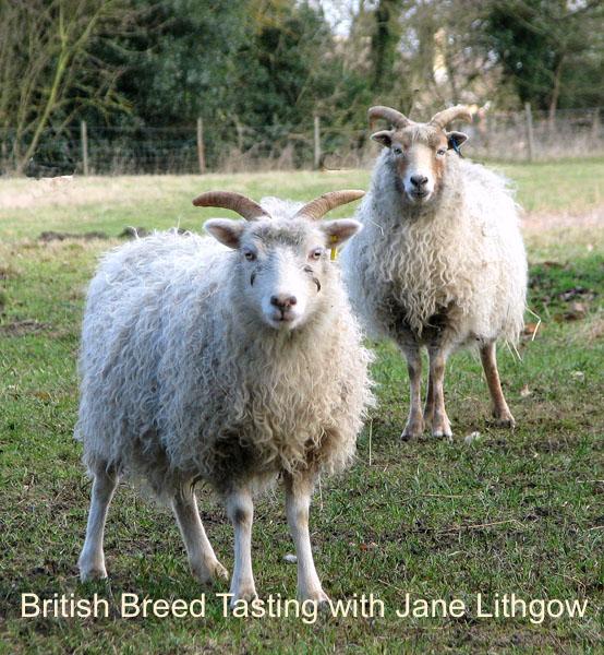 British Breed Tasting.jpg