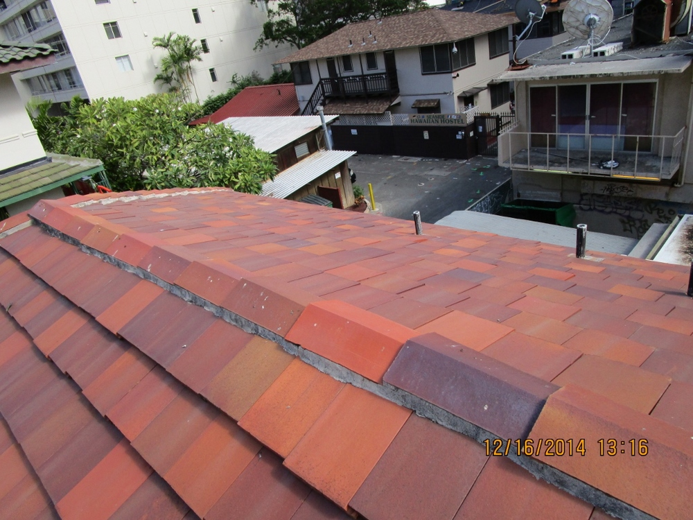 Roof View 6