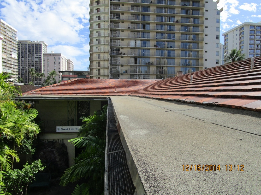 View of Flat Roof 2