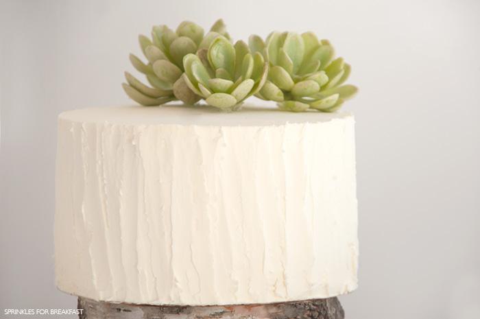 Sprinkles for Breakfast Succulent Cake