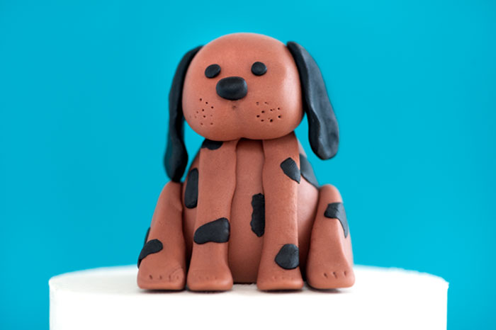 Wags and Walks Dog Cake | Sprinkles for Breakfast