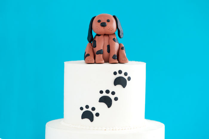 WAGS AND WALKS GALA CAKE