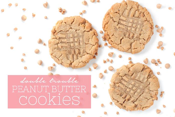 Double Peanut Butter Cookies | Sprinkles for Breakfast