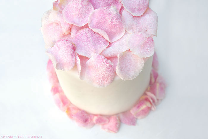 Sugar Rose Cake | Sprinkles for Breakfast