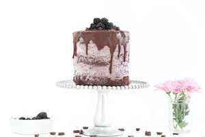 Blackberry blackout ice cream cake