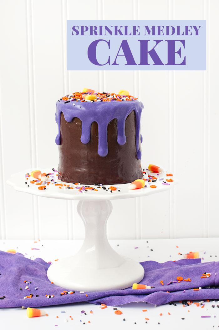 Sprinkle Medley Cake   Sprinkles for Breakfast