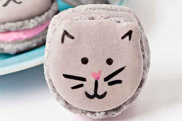 Kitten Macarons