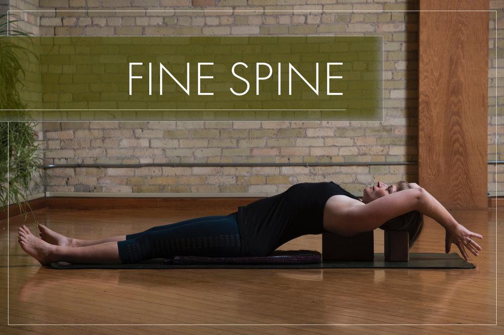 Fine Spine HHY Web.jpg