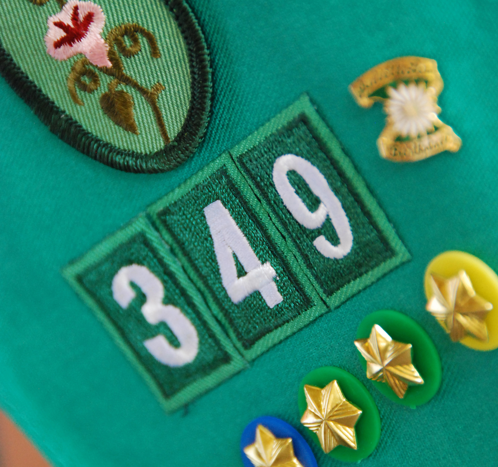 girlscoutbadge.jpg