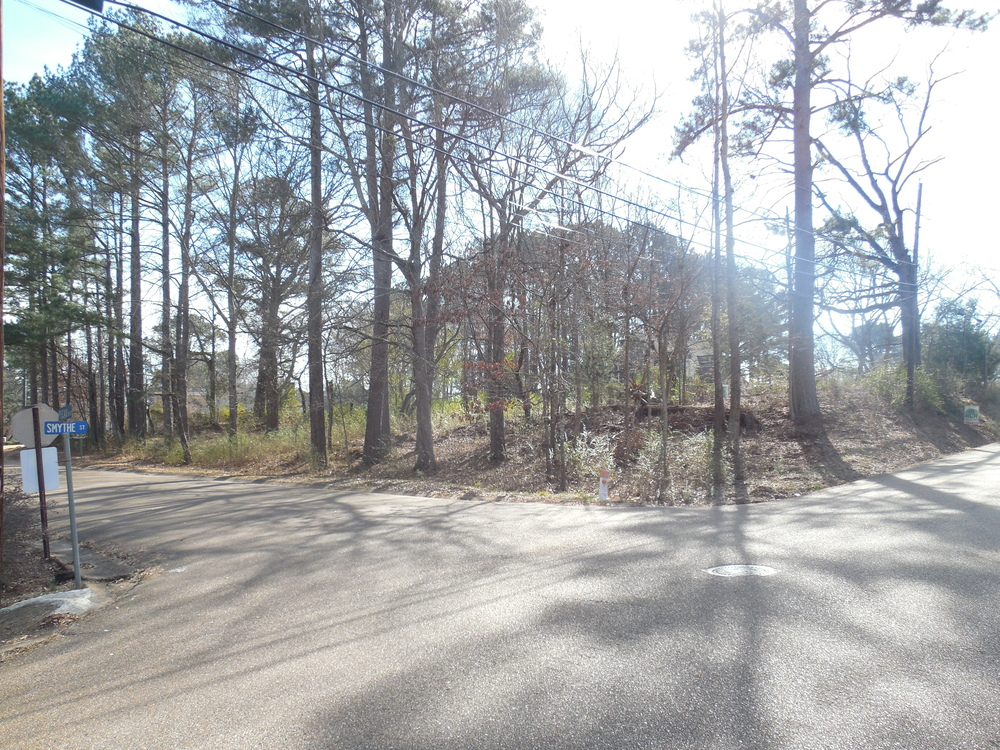 Smythe Street and Pecan Blvd lot.JPG
