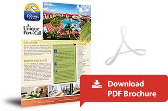 bt_pdf-brochure_en.jpg