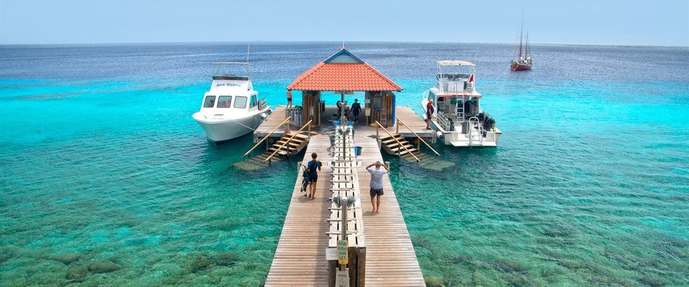 February 19-26 2017   DIVI FLAMINGO BEACH RESORT, BONAIRE   Scroll down for more information....