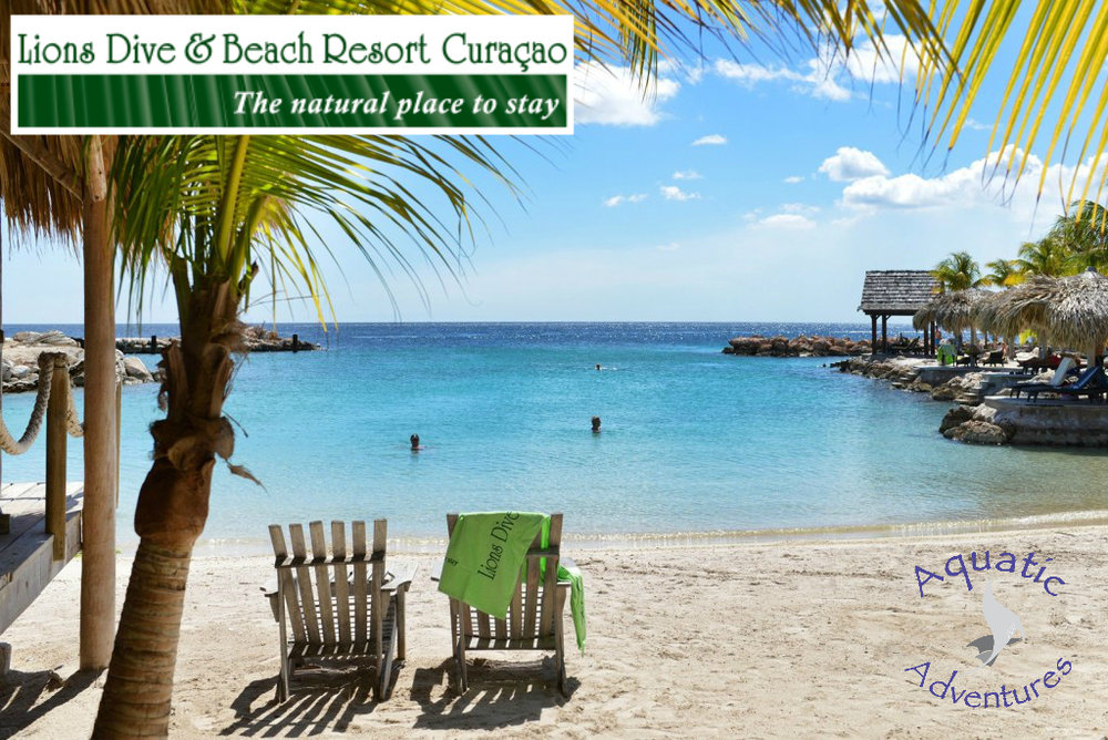 Join Aquatic Adventures in Curacao   Lions Dive & Beach Resort   November 4-11 2017  Scroll down for more info...