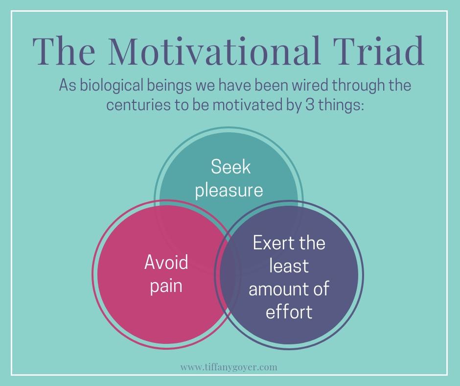 The Motivational Triad.jpg