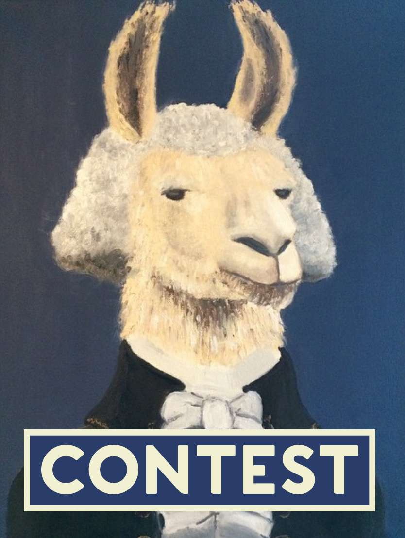 contestheader.jpg