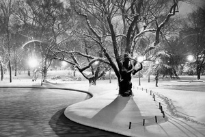 Snowy Winter Beauty At Boston's Public Garden 1951
