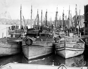 Tied Up Fishing Boats In Gloucester 1933