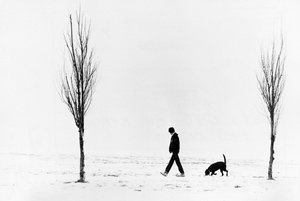 Dog Walk On Foggy East Boston Beach 1980