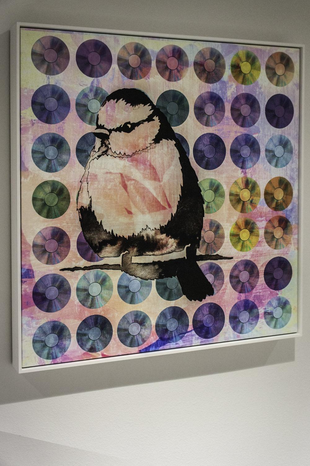 bird12.jpg