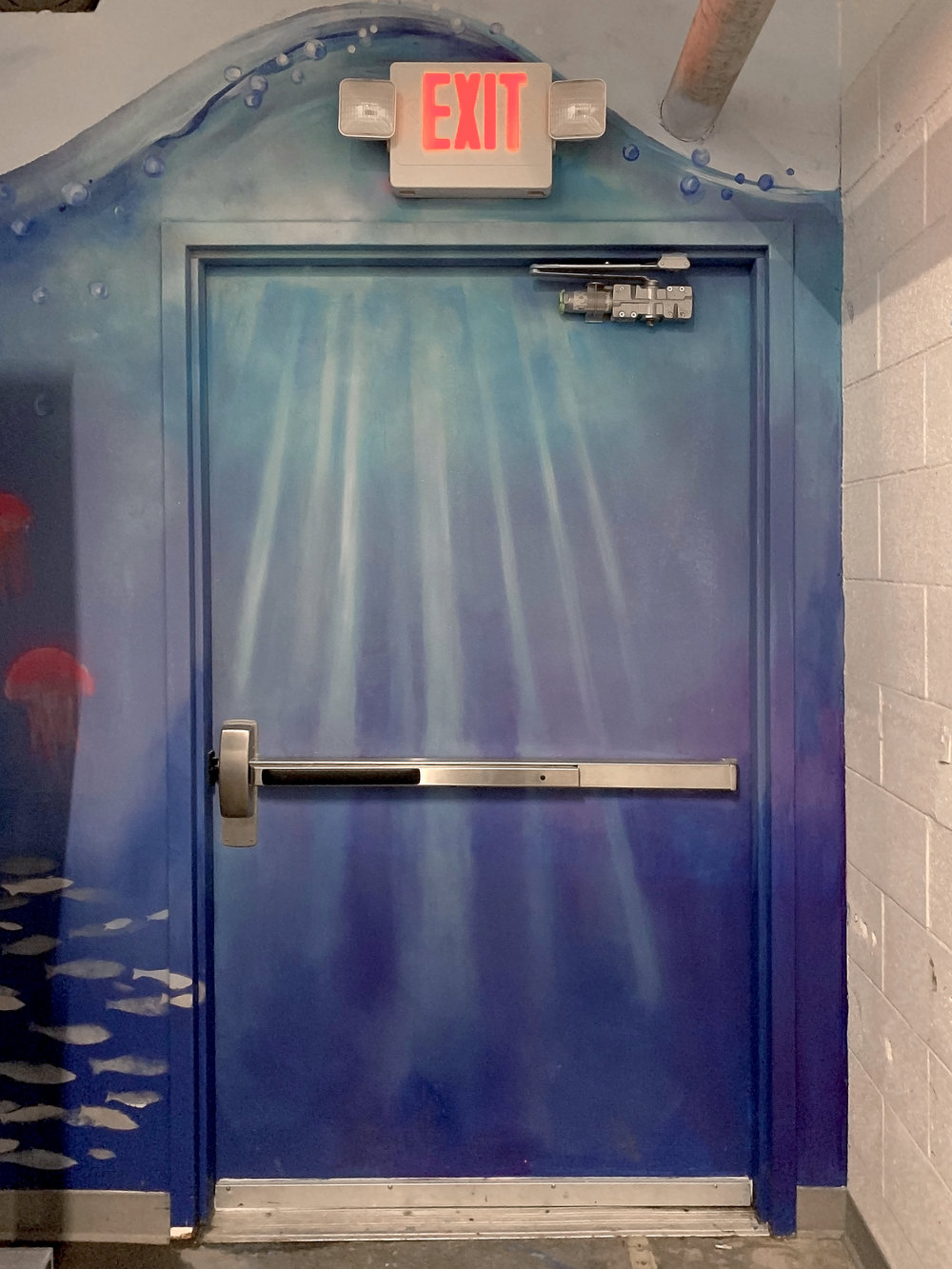 back door.jpg