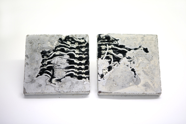 'Zebra Chaos' - Bethany Walker 2011