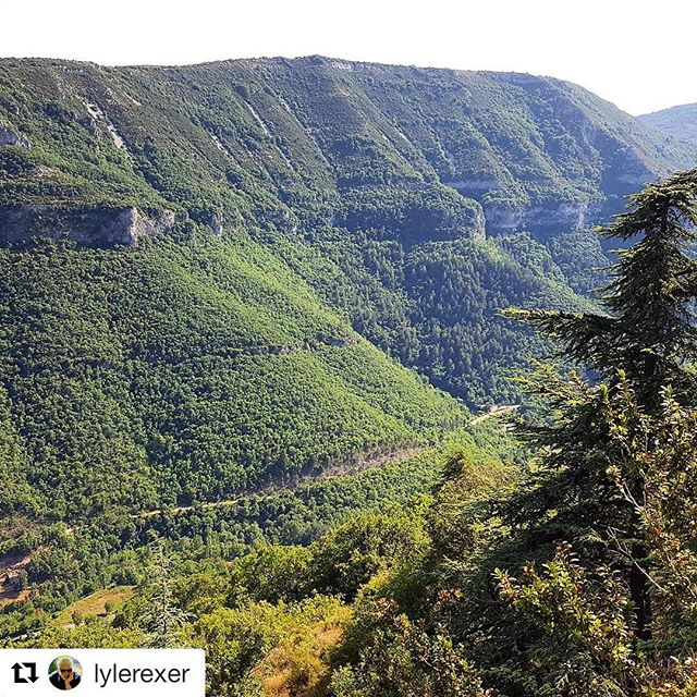 Thank you Mentor for the 3nd year @lylerexer for your wonderful charisma and depth of knowledge. ・・・ The cliffs of the Cevennes  #tpmr2017@photomasterretreat #thephotographymasterretreat . . . #southoffrance #thephotographymasterretreat #frenchcountryside #photomasters #artistworkshop #photographyretreat #Summerworkshop #bastideesparon #airbnb #photomasterretreat #photoworkshop #photography #TPMR #recontresarles #tpmr2017