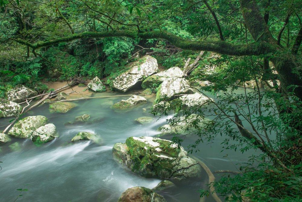 Miyazaki Area Guide | Kaeda River