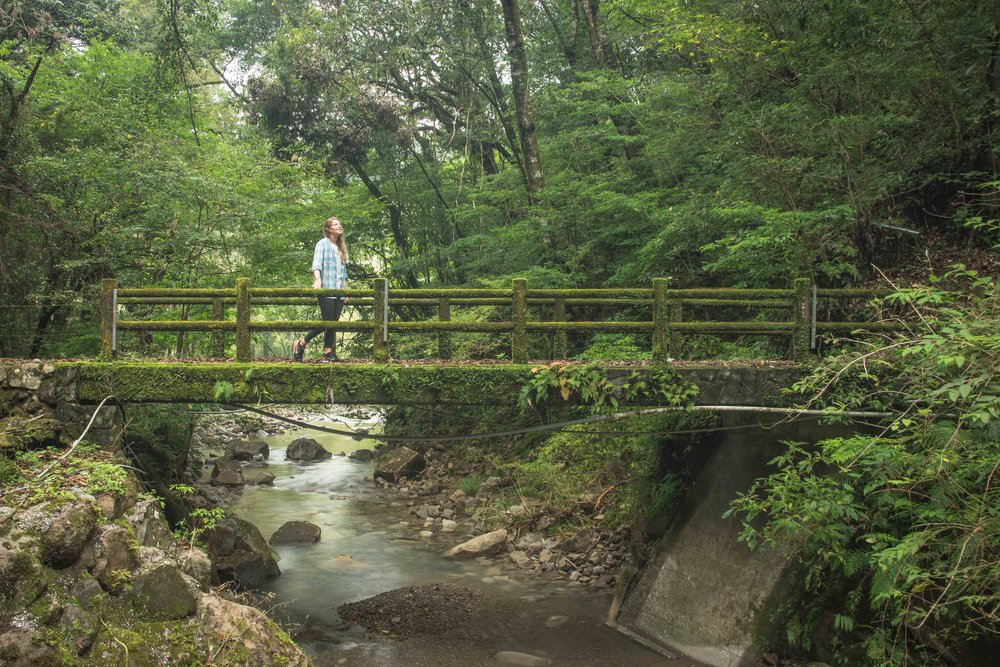 Miyazaki Area Guide | Sakatani Waterfall