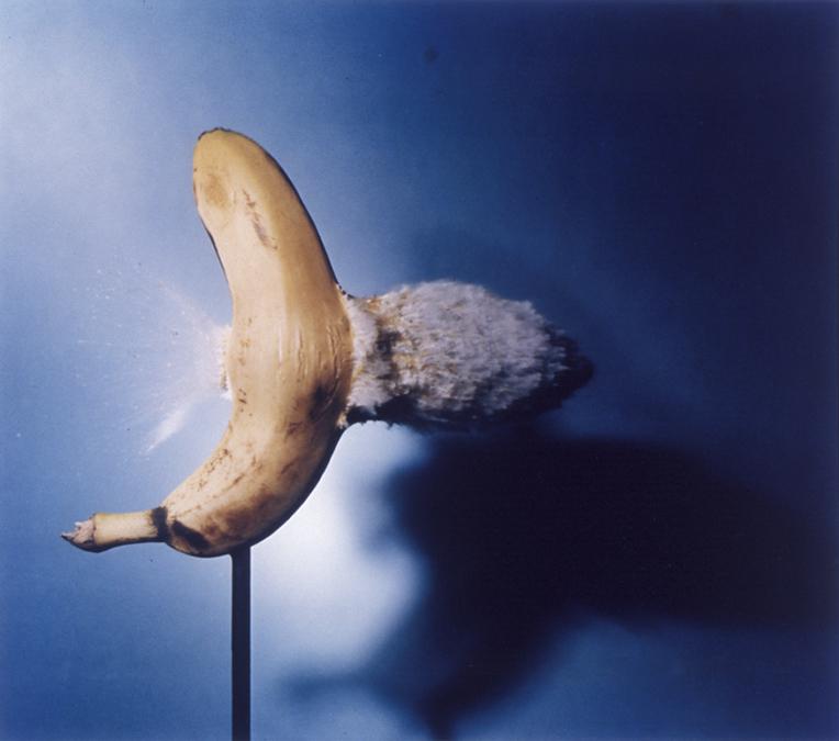 Bullet_banana64001.jpg