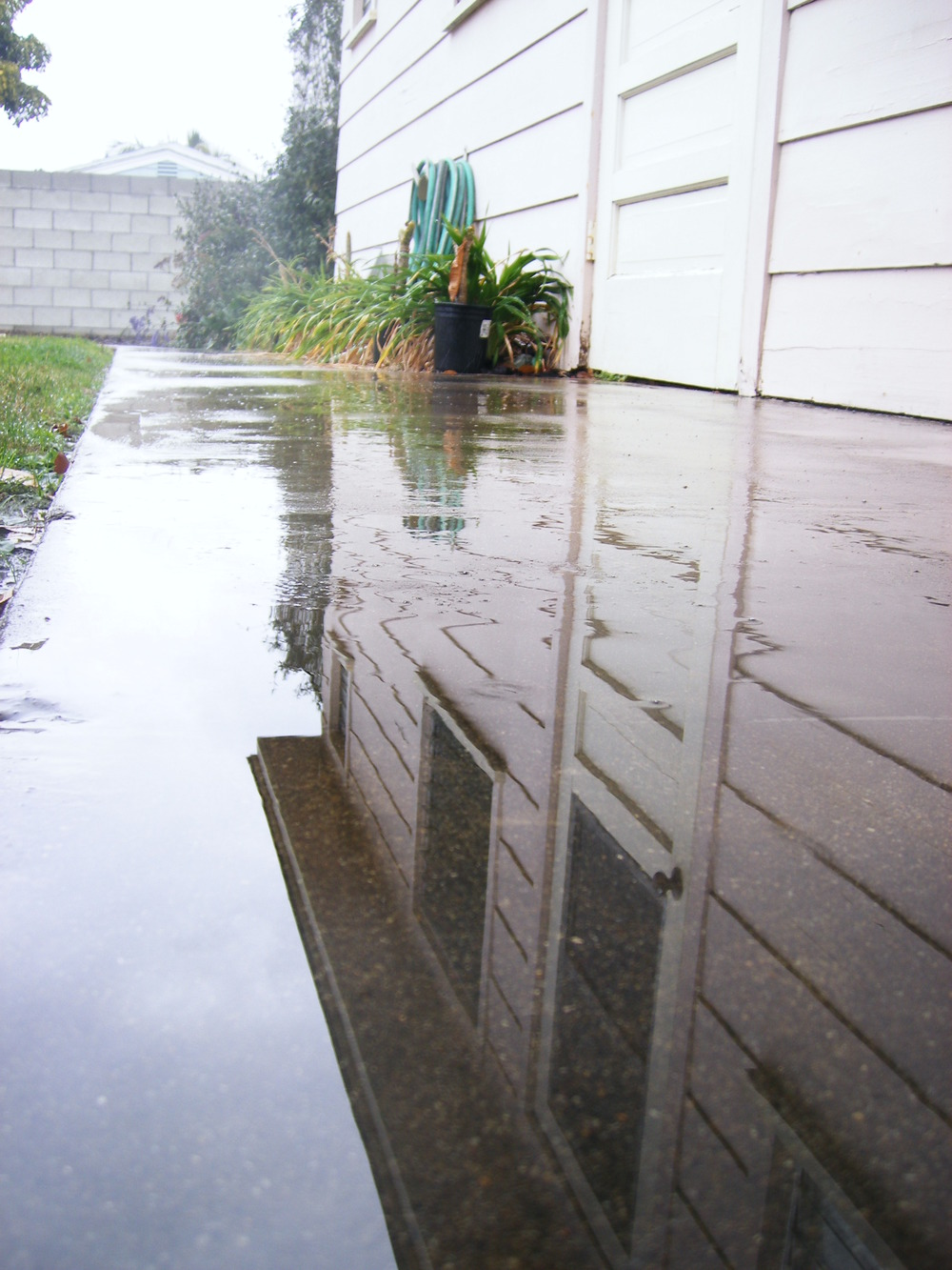 RAIN. 001.jpg