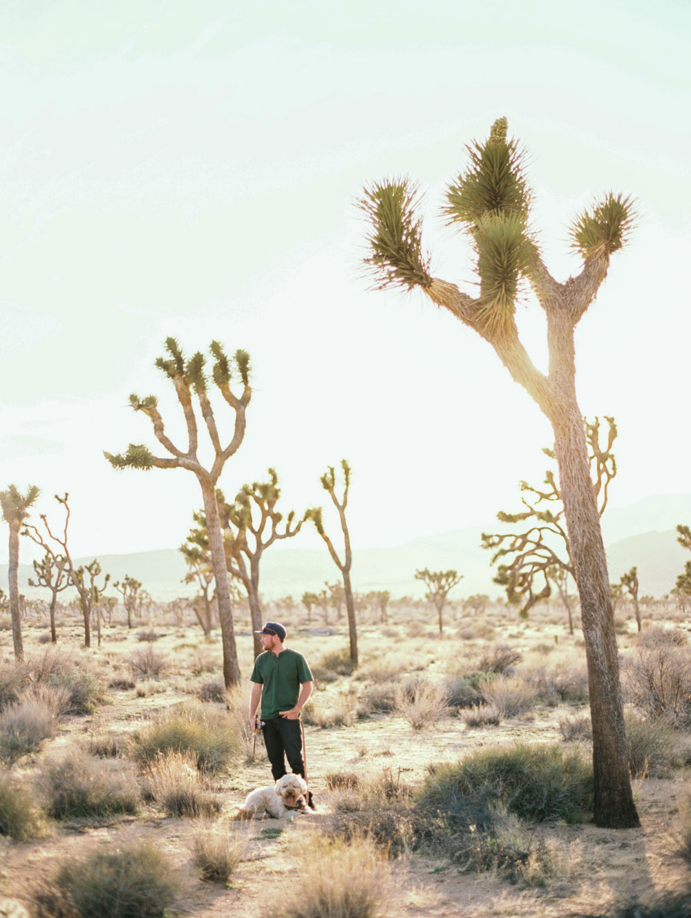 Palm Springs trip-5.jpg