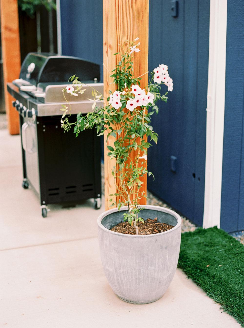 modern backyard-5.jpg