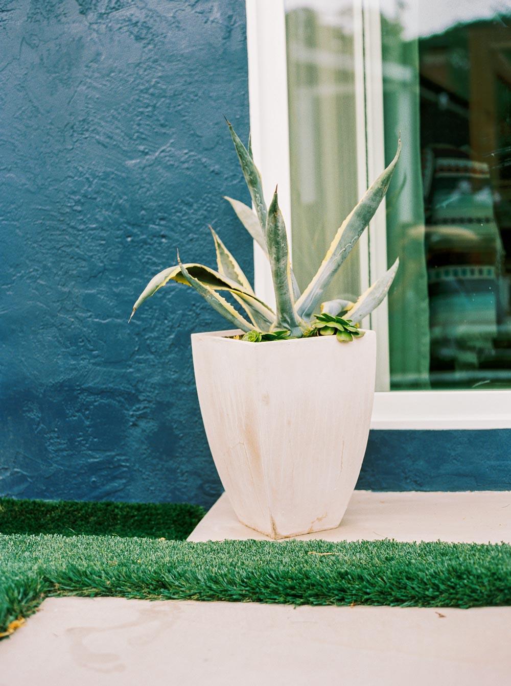 modern backyard-11.jpg
