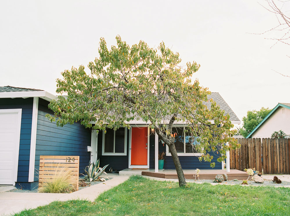 Blue house, modern front yard-6.jpg