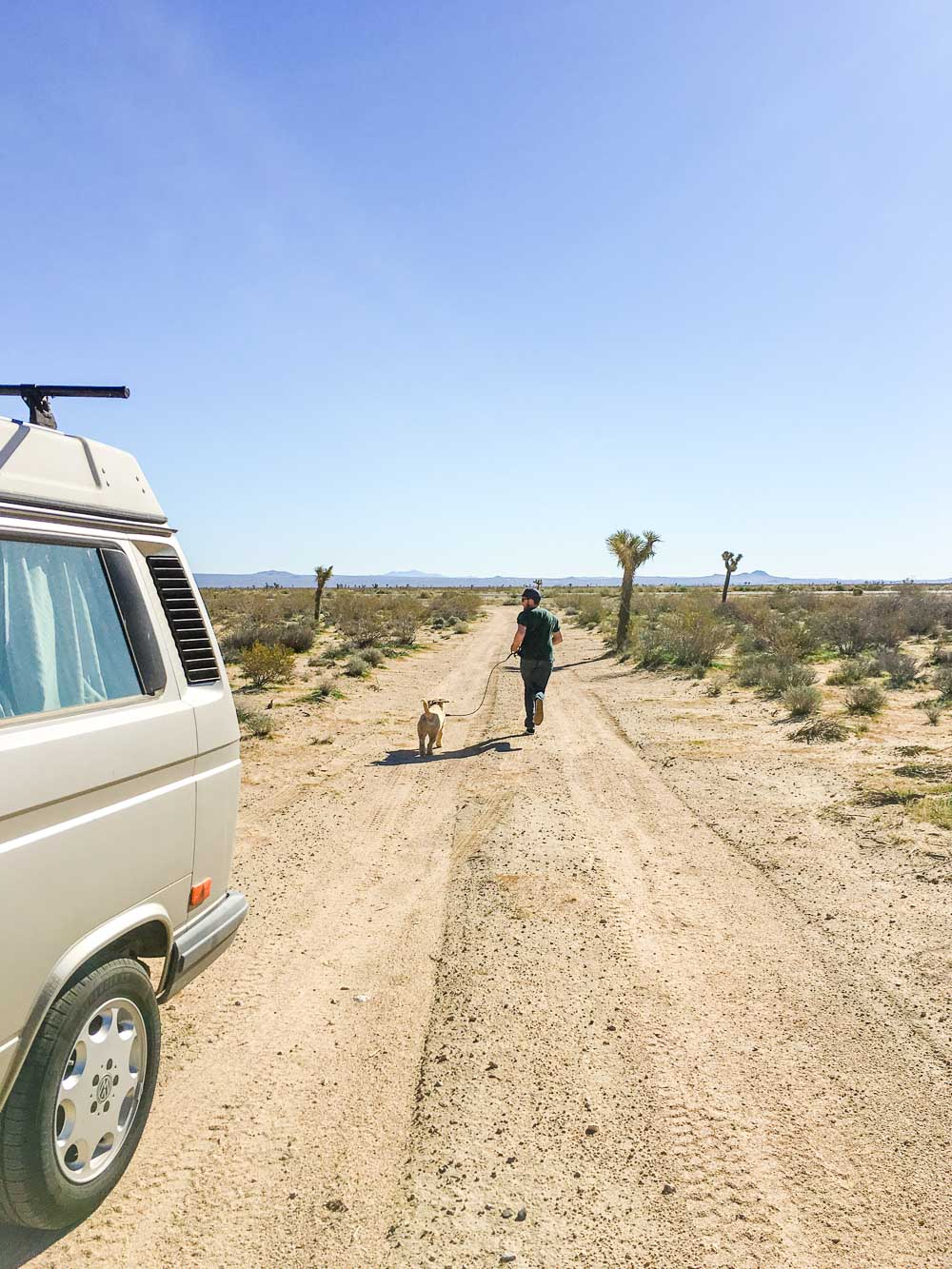 Westfalia road trip-20.jpg