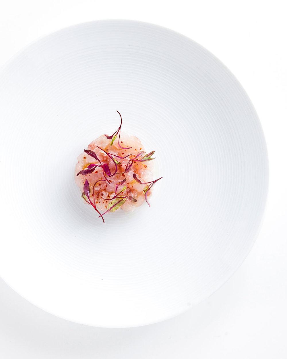 Ceviche-highres_vert.jpg