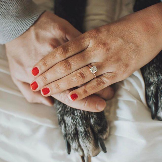 #engagementsessionwithdog #engagementsession #engagement #engaged #love #weddingphotographer #weloveourclients #soontobemrandmrs #esesh #dogsofinstagram #weddinginspirations #puplove #love #engaged #nebraskaphotographer #nebraskaengagement #nebraskawedding #twistedlensphotography #nebraskawedding #nebraskaweddingphotographer #nebraskaweddings #wedding #omahaweddingphotographer #nebraska #photographer #nebride #nebraskabride #weddingphotography #nebraskaphotographer #bride #midwestbride #midwestwedding #omahawedding #rescuedog