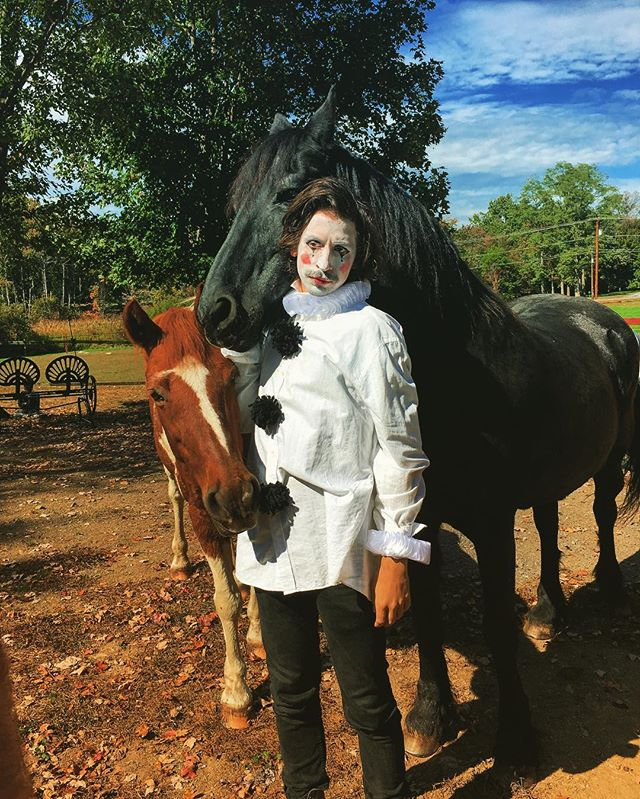 A Sad Clown's Quest To Become An Equestrian #thenoholdsbarredblowhards #itspoultry